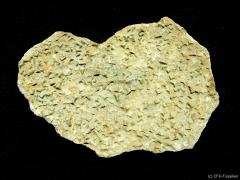 steinsalzkristallmarken