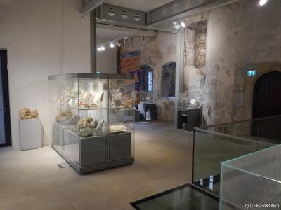 Ausstellungsraum1
