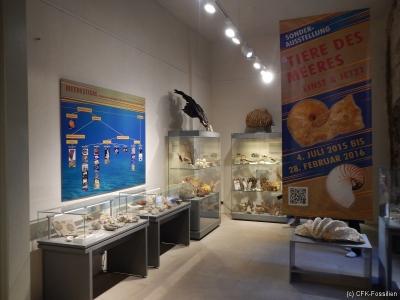 Ausstellungsraum2
