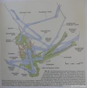 Scan unbest. Flugsaurier 2011